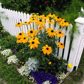 Как правильно оформить цветочную