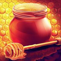 kak-pravilno-hranit-med